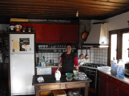 Stemnitsa, Yunani: Nena in her kitchen