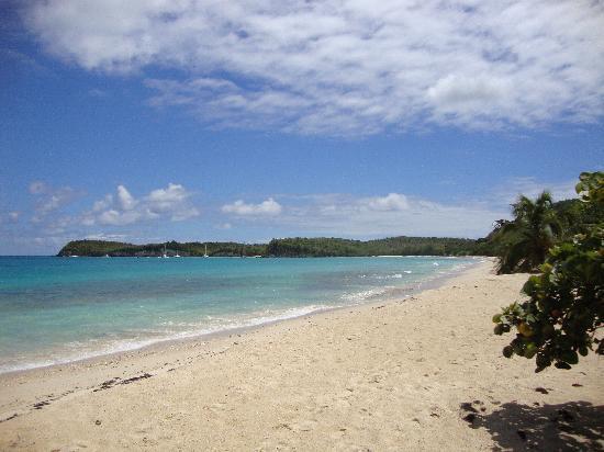 Coco Beach Resort: Marie-Galante, plages magnifiques
