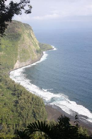 Waipio Rim . . . Room With A View