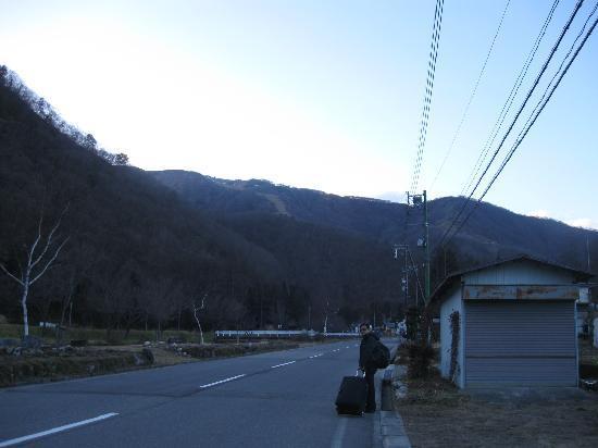 Road to Hayaokidori