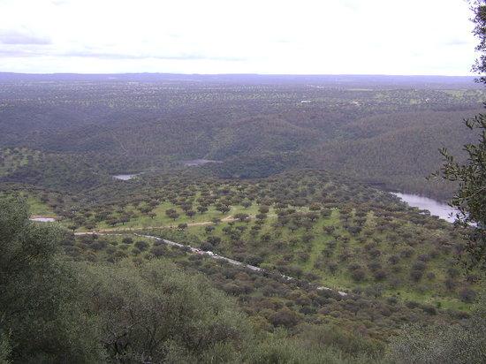 Monfrague National Park : Parque de Monfragüe, Cáceres