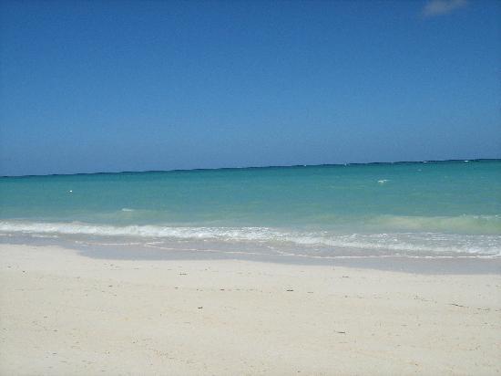 Melia Cayo Coco: The beautiful beach