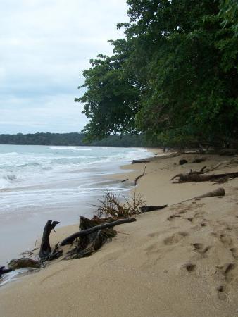 Playa blanca du parque nacional Cahuita