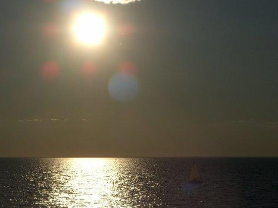 Фалмут, Массачусетс: Cape Cod