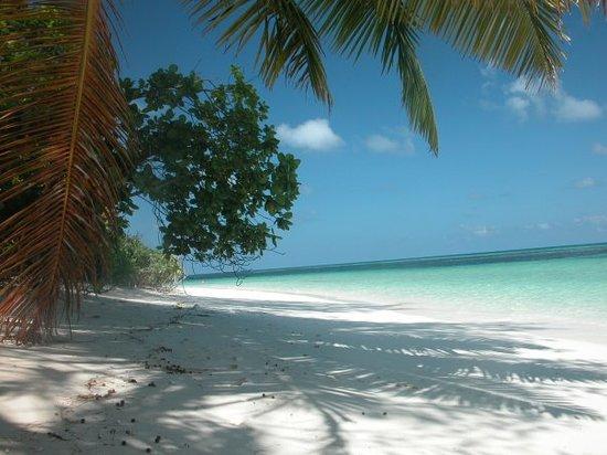 Desroches Island, Seychellen: Depuis l'Ile de Desroches