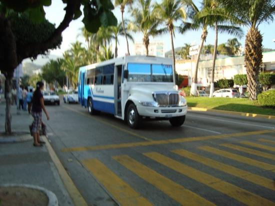 The Cooolest Buses In The Whole World They Were All Suped Up - Suped up