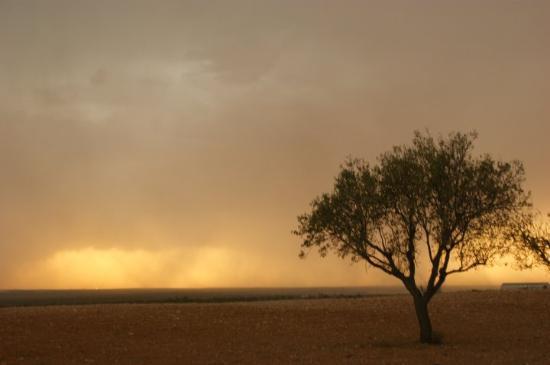 Sfax Foto