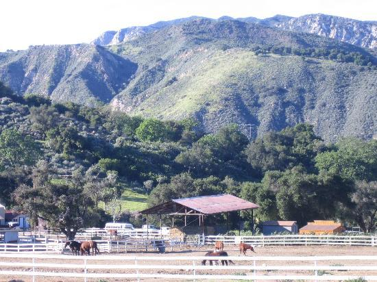 Rancho Oso RV & Camping Resort: Beautiful grounds