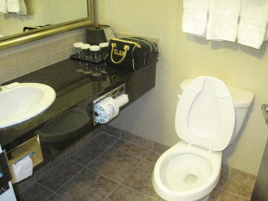 Ramada Weyburn: Ramada room bathroom
