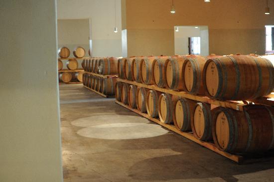 Castello di Brolio: Wine Barrels