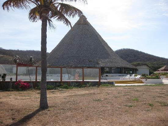 Bolanos Bay Resort: Zona ¿verde? junto al mar, piscina y restaurante