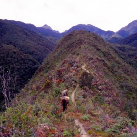 Vilcabamba, เอกวาดอร์: Villcabamba-Parque Podocarpus-Ecuador
