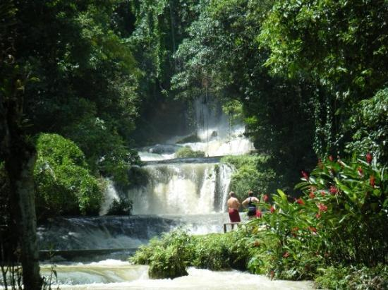 YS Falls: 700 ft zip line right over these falls - it was  A M A Z I N G!!!
