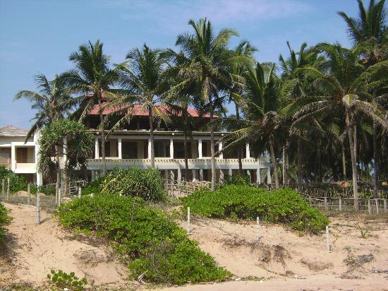 Turtle Bay: Hotel from beach