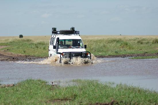 Masai Mara naturreservat, Kenya: adventure