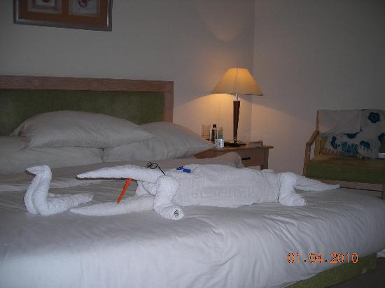 Towel croco :-)