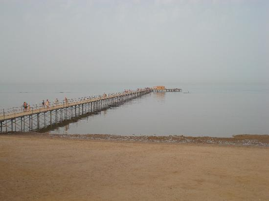 The Three Corners Sunny Beach Resort: ponton