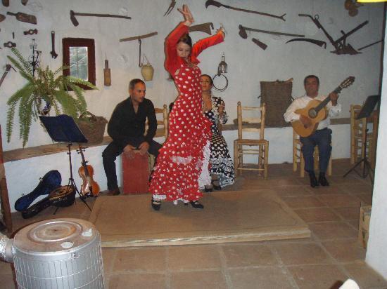 La Venta de Frigiliana: Show Flamenco sin micrófonos (reservar mesa)
