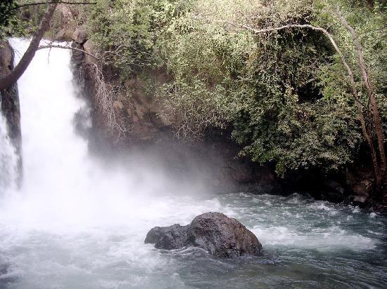 Ron Beach Hotel: Waterfall of the Banias