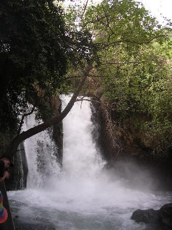 Ron Beach Hotel: water fall, Banias park