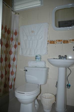 Hotel Santana: batroom