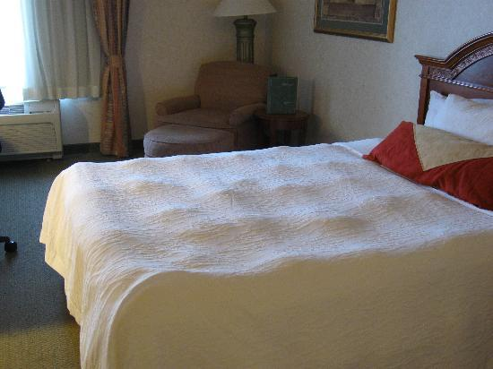 Hilton Garden Inn Tri-Cities/Kennewick: Bedspread like a mogul ski slope
