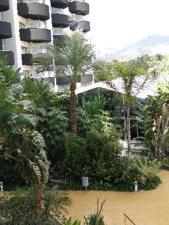 Albir Playa Hotel & Spa: Zona exterior del hotel