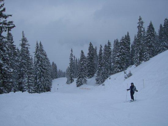 スキーアールベルグ