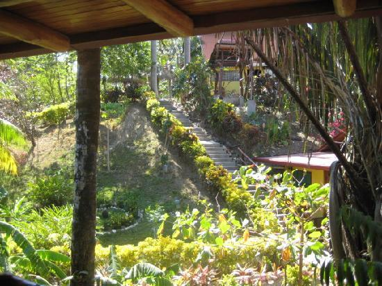Giardino Tropicale: View from our room