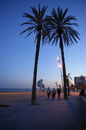 La Barceloneta: Barceloneta