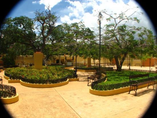 Aguadilla, Puerto Rico: parterre inside view
