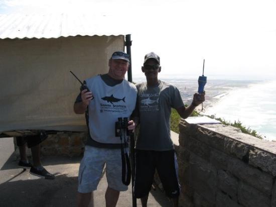 Hout Bay: Shark Watching