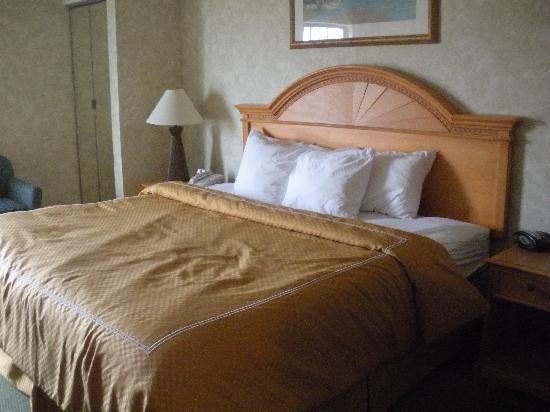 Comfort Suites Ocean City: Comfort Suites