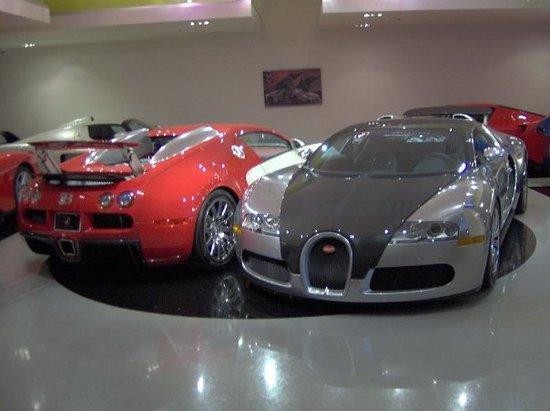 My Dream Car Picture Of Exotic Car Gallery Orlando TripAdvisor - Exotic car show orlando