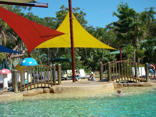 NRMA Ocean Beach Holiday Park: Resort style pool