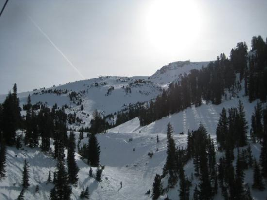 Mammoth Lakes Photo