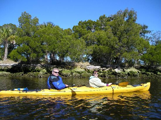 Holiday Inn Express Crystal River: plenty of great kayaking nearby