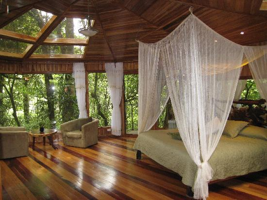 Hidden Canopy Treehouses Boutique Hotel: Glade Treehouse