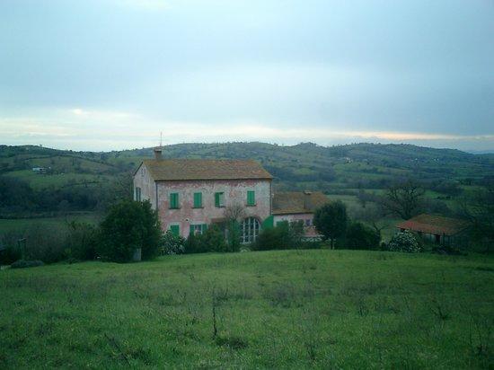 Scansano, Italy: Il podere