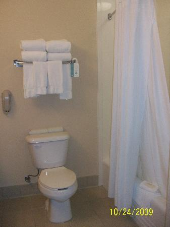 Rodeway Inn & Suites 29 Palms near Joshua Tree National Park: Clean bathrooms