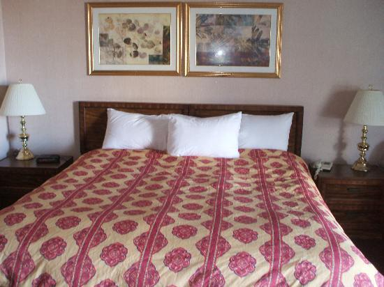 Lincoln Motor Inn Fallsview: new duvet - king room