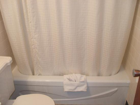 Lincoln Motor Inn Fallsview: new shower curtains