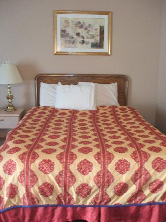 Lincoln Motor Inn Fallsview : new beds and pillows
