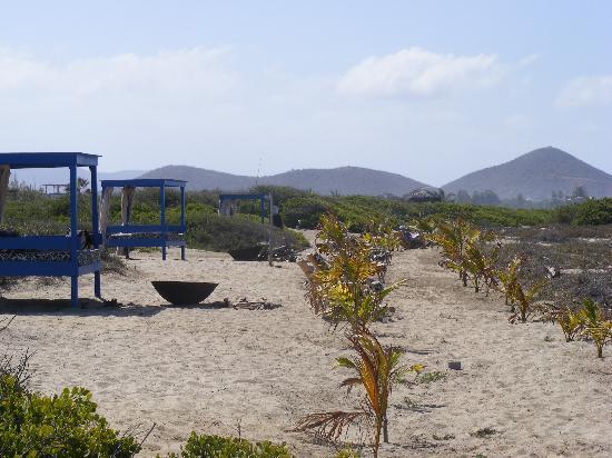 Rancho Pescadero : looking down the beach