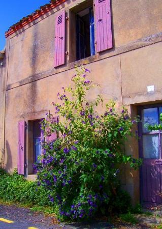 Noirmoutier en l'Ile, Francia: St. Jean de Mont