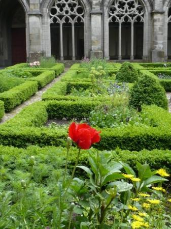 Utrecht, The Netherlands: Gardens at Cathedral of St. Martin
