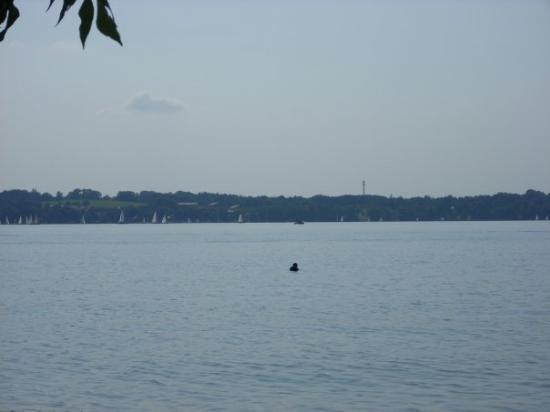 der Starnberger See!