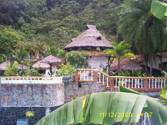 Rio Selva Resort - Yungas: Ésta es la vista desde la habitación, la cual era espectacular