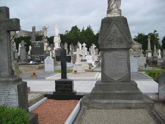 Cimetière de Glasnevin : Graves in Glasnevin.  Eamon de Valera's grave is the white cross in the center.