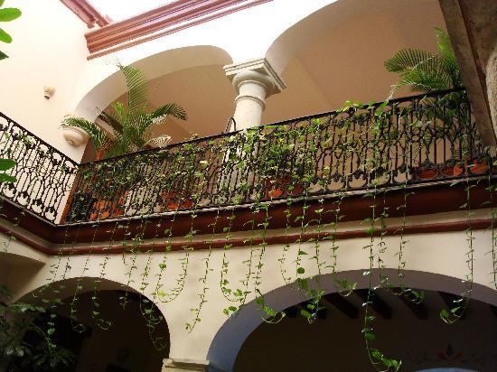 Hotel Parador San Agustin: hermosas plantas por do quier
